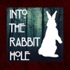 Into The Rabbit Hole artwork