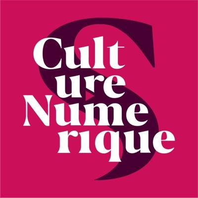 Culture Numérique:Siècle Digital