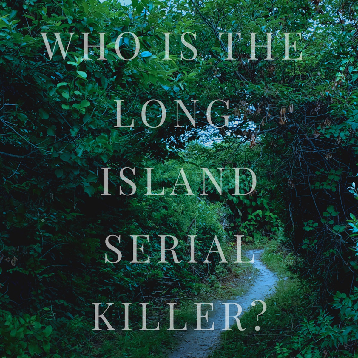 Ossuary Investigates the Long Island Serial Killer