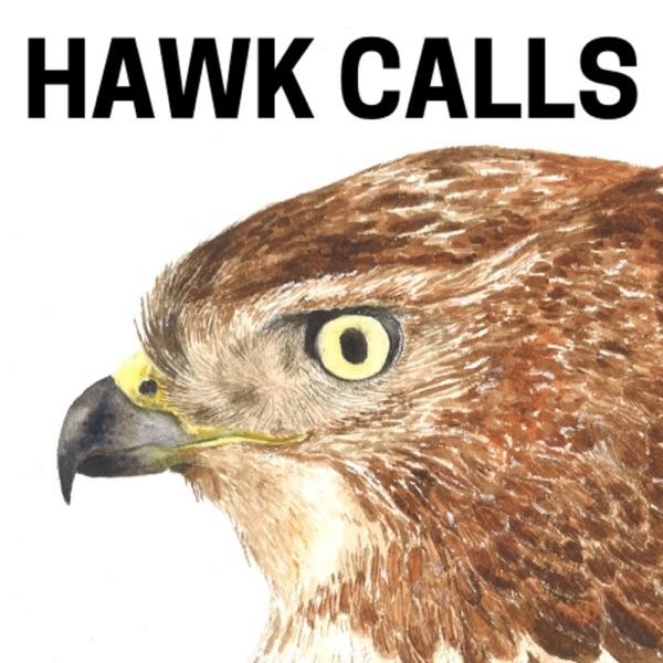 Hawk Calls