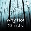 Why Not Ghosts artwork
