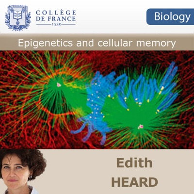 Epigenetics and cellular memory
