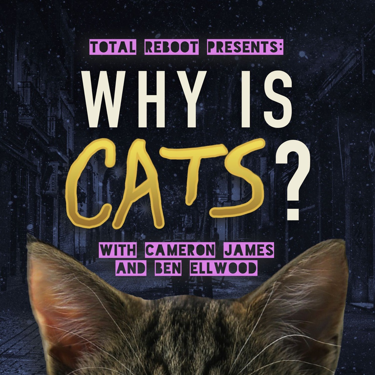 Why is Cats?