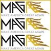 MAGA Coalition artwork