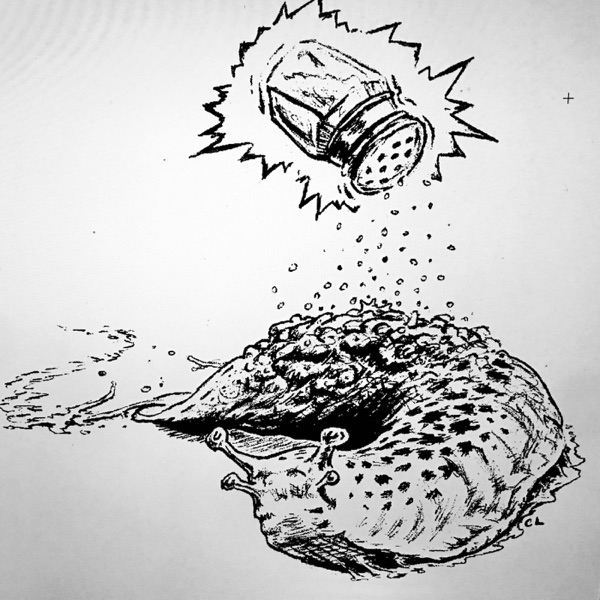 Salt For Slugs Magazine's Podcast