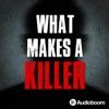 What Makes a Killer artwork