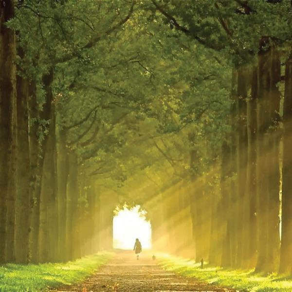 Reverence Road