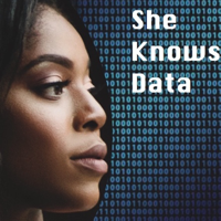 She Knows Data podcast