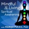 Mindful Living Spiritual Awakening artwork