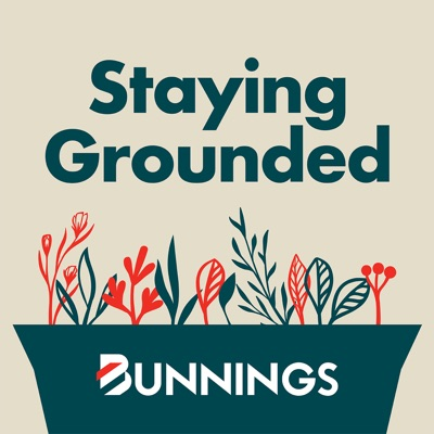 Staying Grounded:Bunnings