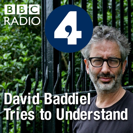 Cover image of David Baddiel Tries to Understand