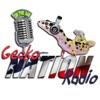 Gecko Nation Radio artwork