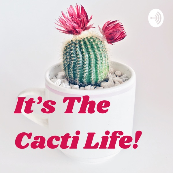 It's The Cacti Life!