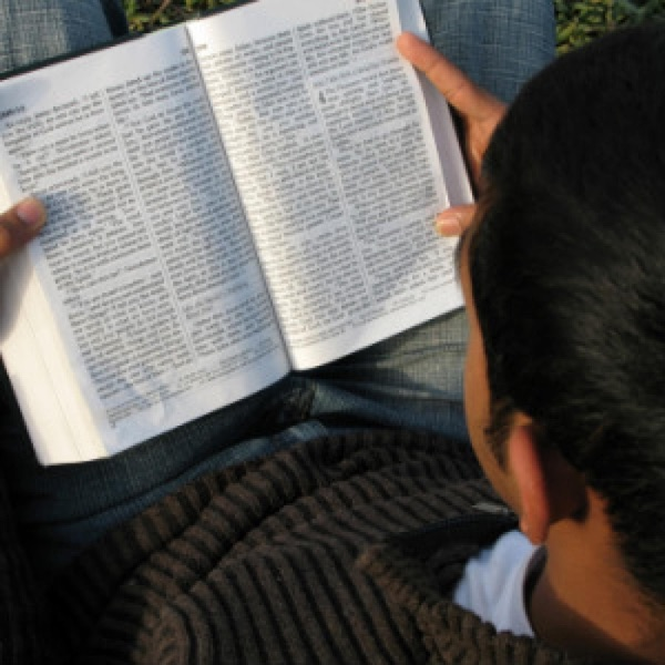 Abiding  in the Word