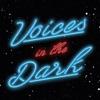Voices in the Dark artwork