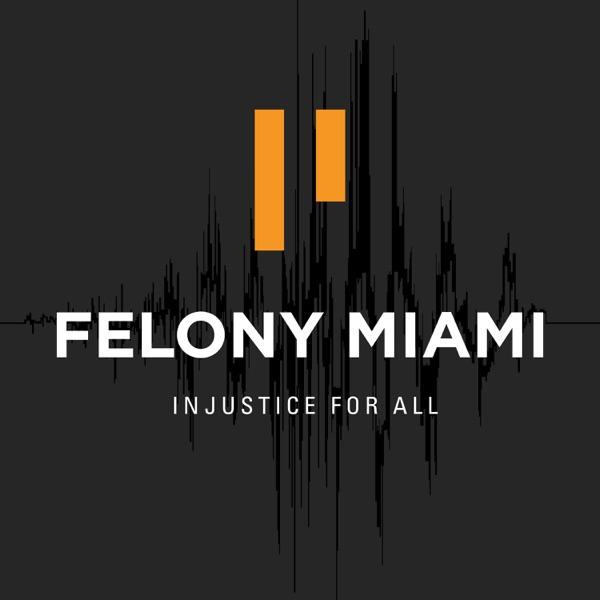 Felony Miami
