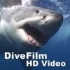 DiveFilm HD Video artwork