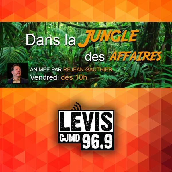Dans la jungle des affaires | CJMD 96,9 FM LÉVIS | L'ALTERNATIVE RADIOPHON