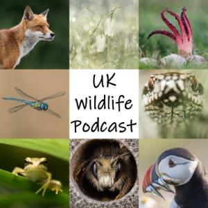UK Wildlife Podcast