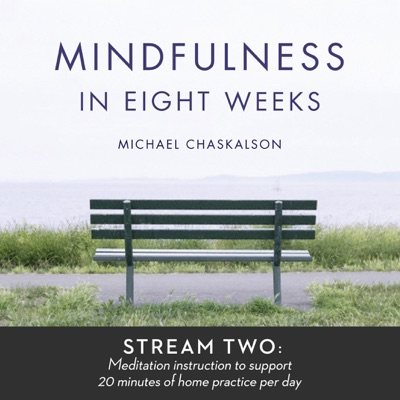 Mindfulness in 8 Weeks: 20 Minutes a Day Program:Michael Chaskalson