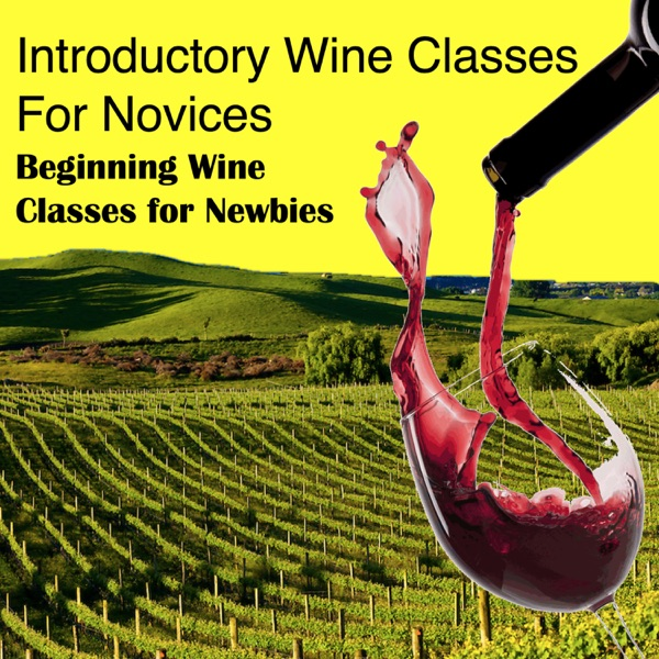 Introductory Wine Classes for Novices