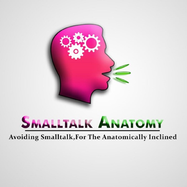 Smalltalk Anatomy