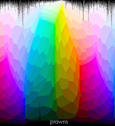 Prawns Mix Sessions Podcast