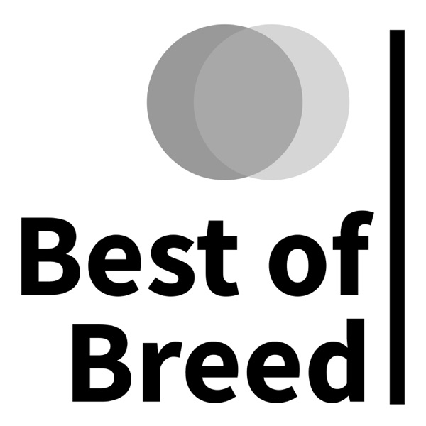 Best of Breed Stock Investing