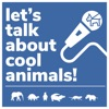 Let's Talk About Cool Animals! artwork