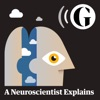 A neuroscientist explains – podcast