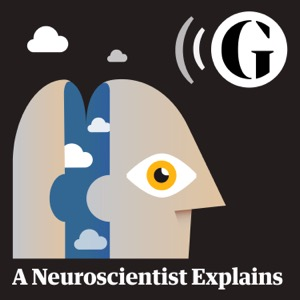 A Neuroscientist Explains