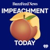 Impeachment Today artwork