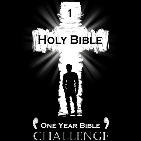 Holy Bible One Year Challenge