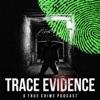 Trace Evidence artwork