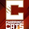 Chirping the Cats artwork