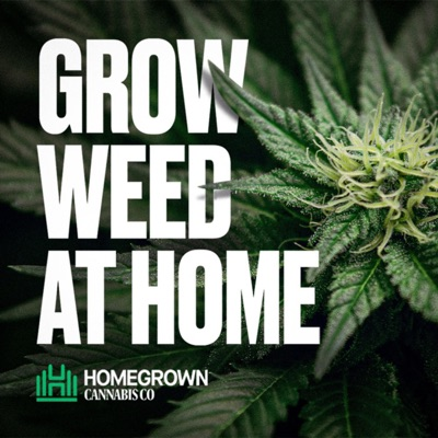 Grow Weed at Home with Homegrown Cannabis Co:Derek LaRose