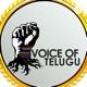 Voice Of Telugu