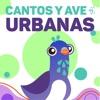 Cantos y Aves Urbanas
