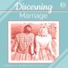 Discerning Marriage artwork