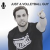 Just a Volleyball Guy artwork