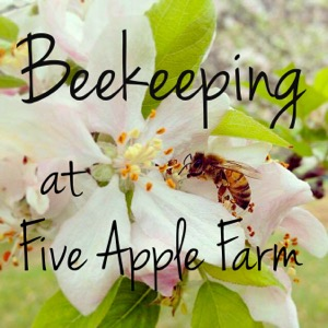 Beekeeping at Five Apple Farm Podcast