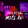 Juventud MIEL AV artwork