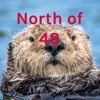 North of 48 artwork