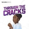 Through The Cracks artwork