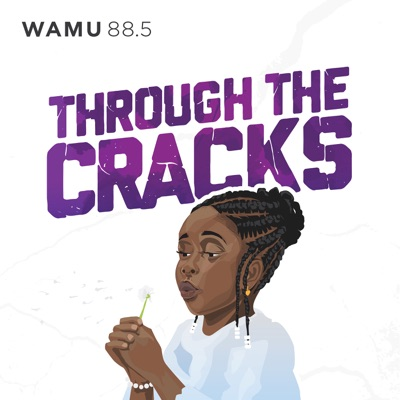 Through The Cracks:WAMU