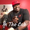 In The Lab  artwork