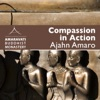 Compassion in Action by Ajahn Amaro