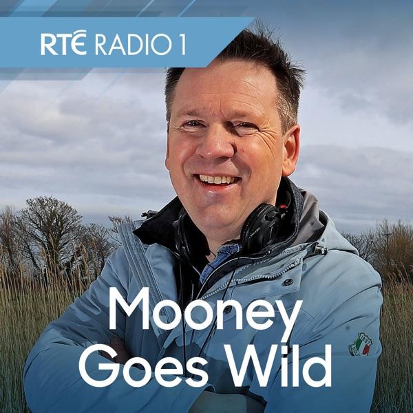 Mooney Goes Wild