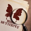Iron Butterfly artwork