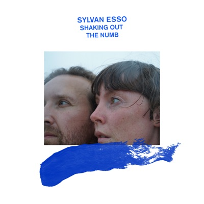 Shaking Out the Numb:Sylvan Esso